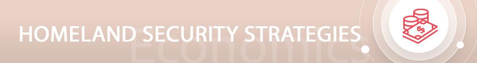 Homeland Security Strategies